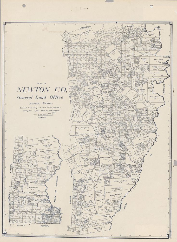 Blue line print of survey map of Newton County, Texas, showing rivers, creeks, original land grants or surveys, cities, towns, and railroads. Scale [ca. 1:200,000] (6000 varas to the inch).
