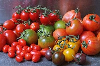 mmm i love tomatoes