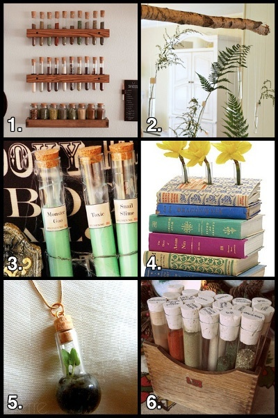 1000 images about test tubes on pinterest geek crafts for Test tubes for crafts