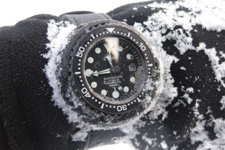 Seiko Professional Specifications - PROSPEX - Monochrome Watches