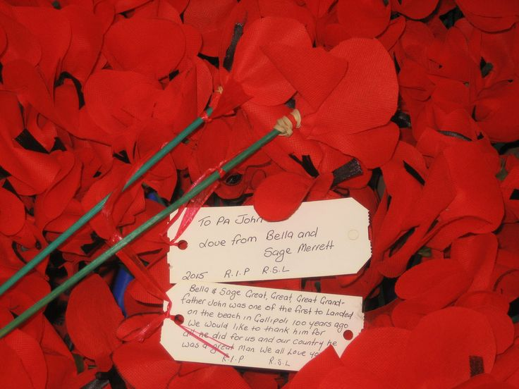 Poppies with tags, Gosford City Library April 2015 | Flickr - Photo Sharing!