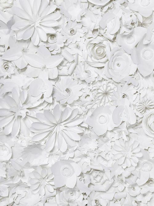 fleurs découpées