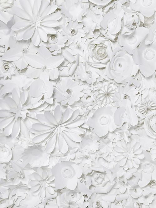 ,Ideas, White Flower, Texture, Sabrina Transiskus, Paper Art, White Christmas, White Paper, Paper Flowers, White Wall