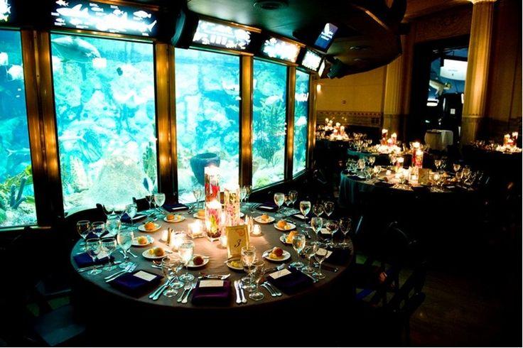 Shedd Aquarium Wedding This Will Be My Wedding No