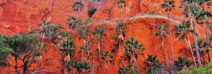 A photographer's haven- the Bungle Bungles- Purnululu National Park
