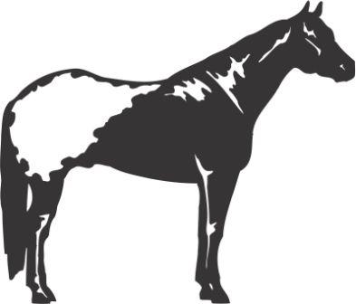 Силуэт лошади G