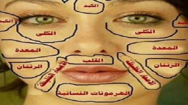 حكايات الحروف الابجديه للاطفال بالصور منتدى فتكات Face Reflexology