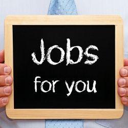 Lowongan Kerja STAFF di Solo Januari 2015 - http://www.lowkerr.com/lowongan-kerja-staff-di-solo-januari-2015.html