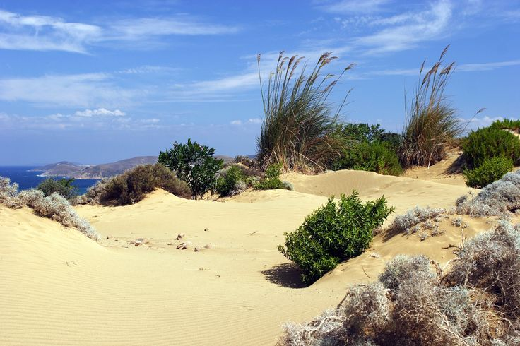 The spectacular sandy dunes of Limnos Island! ‪#‎sandydunes‬ ‪#‎limnos‬ ‪#‎limnosbeaches‬ ‪#‎greece‬ ‪#‎northaegean‬ ‪#‎travel‬ ‪#‎greeksummer‬