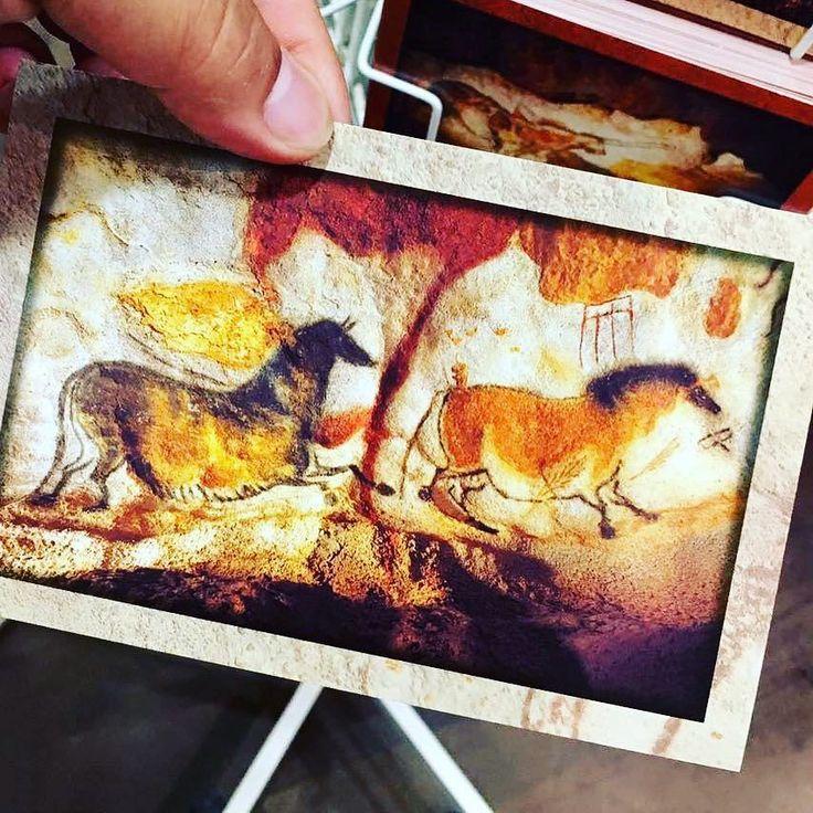 #grottes #de #lascaux #grottedelascaux #homosapiens #peinture #sur #mur #法国 #多尔多涅省 #拉斯科 #洞穴 #史前 #壁画