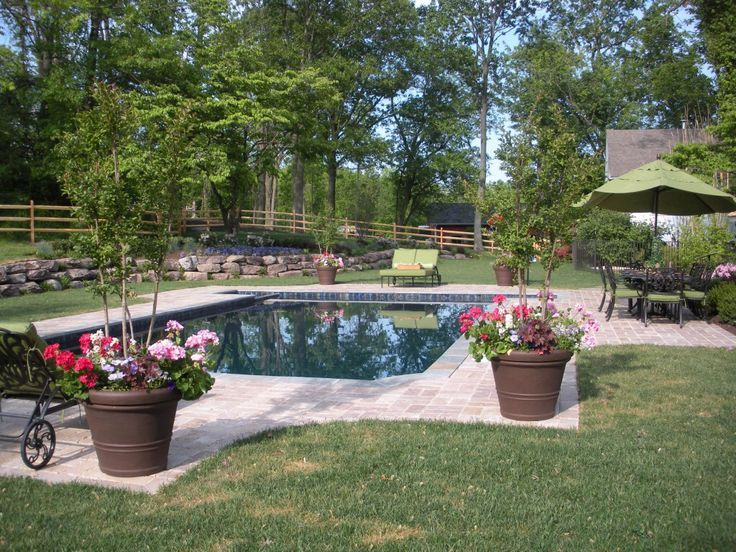 40 best pool ideas images on pinterest swimming pools for Small rectangular garden ideas