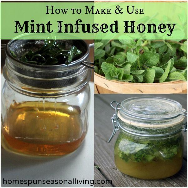 How to Make and Use Mint Infused Honey - Homespun Seasonal Living