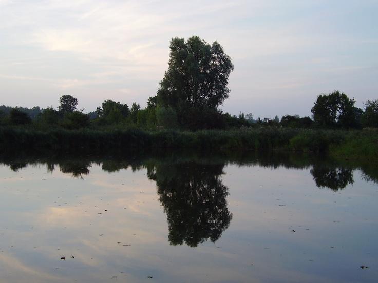 Heidegebied Nisse