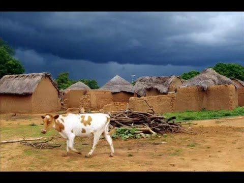 Fotos de: Africa - Ghana - MognoriEcoVillage