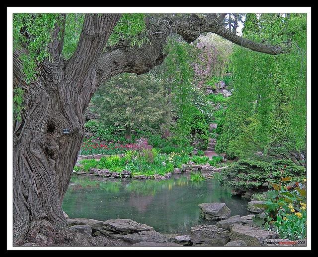 Royal Botanical Gardens, Hamilton Ontario