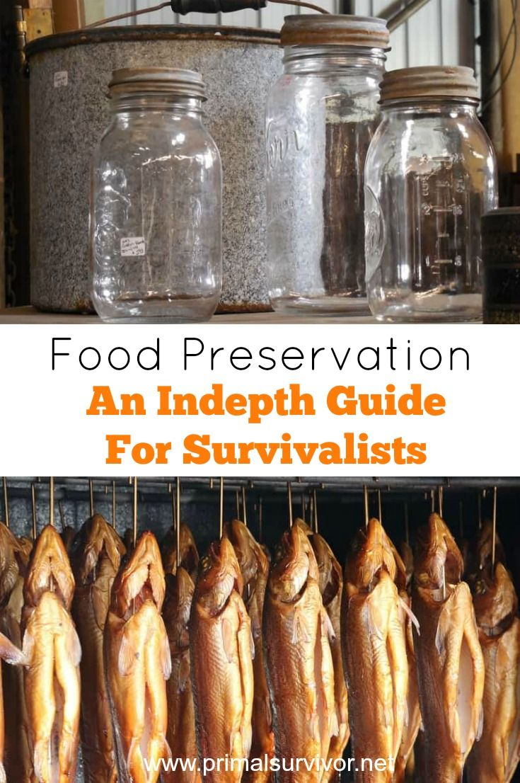 Food Preservation An In depth Guide for Survivalists. Our grandparents used to spend their weekends canning veggies from their garden, smoking meat (often from game they caught themselves), and making real pickles.Today, we have mostly lost this knowledge. Even in the era of mega supermarkets, there are a lot of reasons to learn how to preserve your own food. For your Emergency Food Supply, make the most of your homesteading surplus or just to know exactly what you are eating.