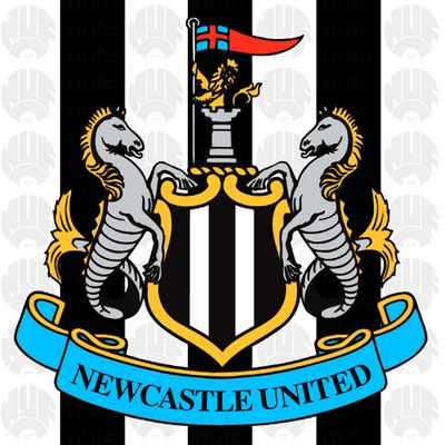 Newcastle United FC  @NUFC The official Twitter account of Newcastle United FC.  St. James' Park  nufc.co.uk
