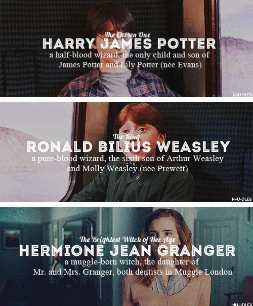 Harry James Potter, Ronald Bilius Weasley, Hermione Jean Granger. Wait, Harry's a pureblood! Lily was a mudblood but she was still magical!