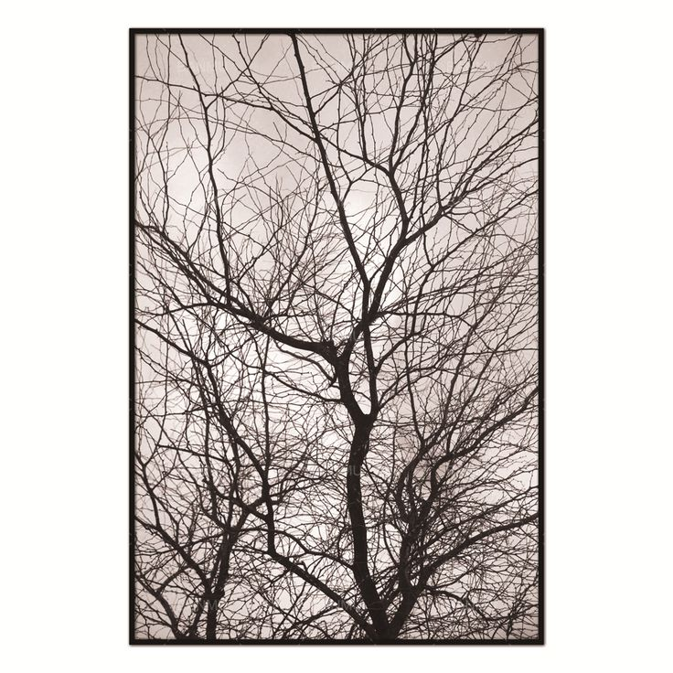 Wall Pictures Nordic Trees Winter Abstract for Living Room Art Decoration Pictures Scandinavian Canvas Painting Prints No Frame