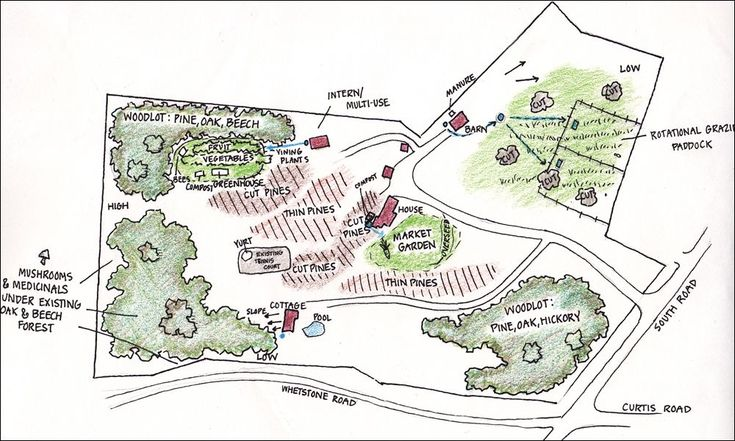 Image result for permaculture map | Permaculture design ...
