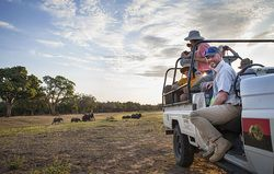 If you are looking for a real adventure, have a look at Khangela Safaris.