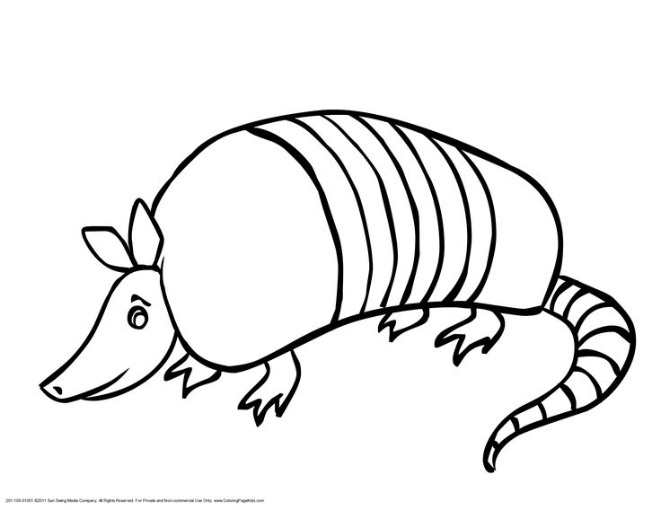 armadillo coloring pages - photo#10