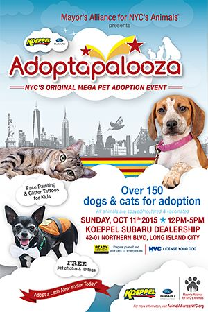Join the Mayor's Alliance for NYC's Animals for Adoptapalooza, NYC's original mega pet adoption event, featuring cats, dogs, kittens, and puppies (and sometimes rabbits) from dozens of shelters and rescue groups.
