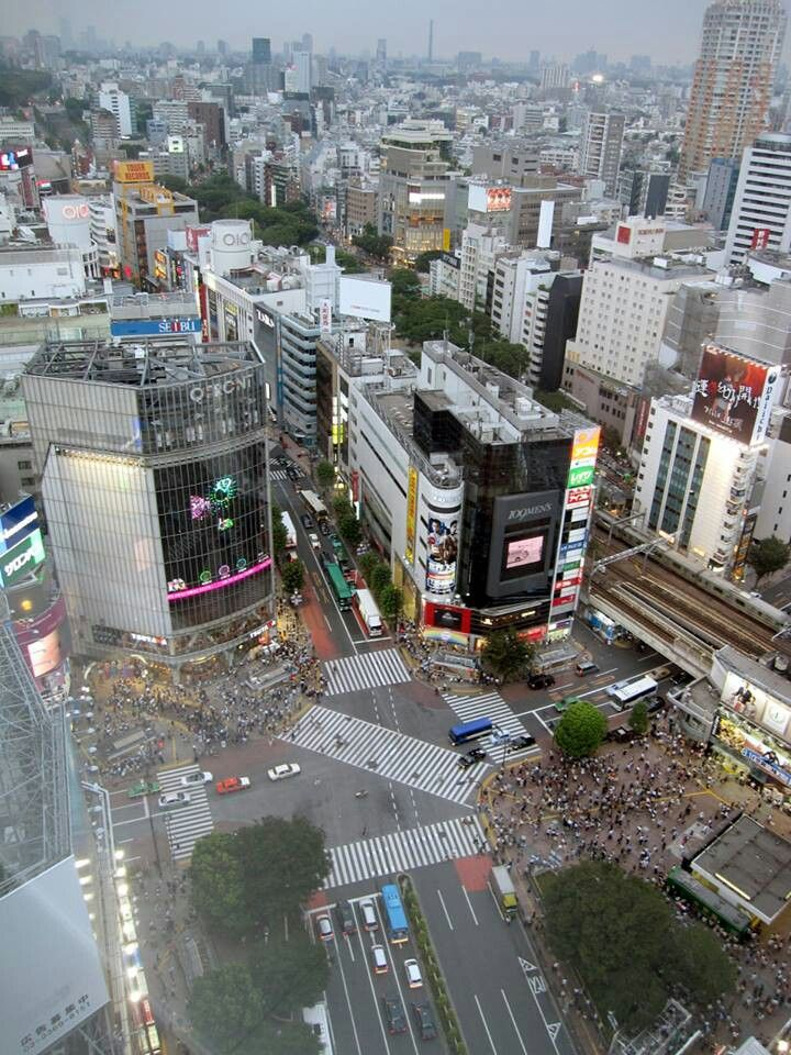 Shibuya crossing -  it's calling me back!!  I love the energy of this place. -Lily