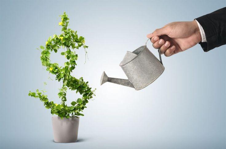 Как распознать перспективную бизнес-идею