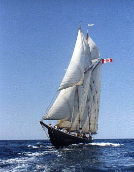 Bluenose II I'e been on this baby!