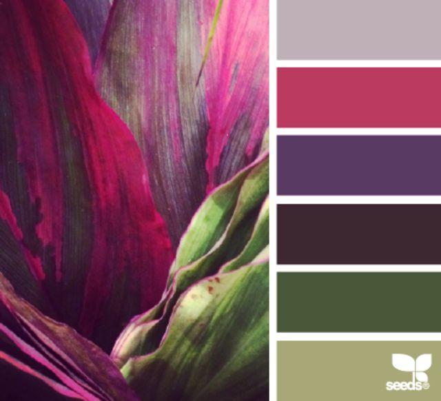 Blurb ebook: Design Seeds Color Almanac by Jessica Colaluca