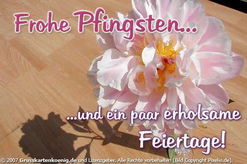 Pfingsten Gästebuch Bilder - dsjghsag.jpg - GB Pics