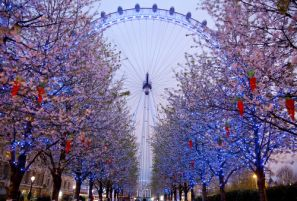 London: What to Know Before You Go