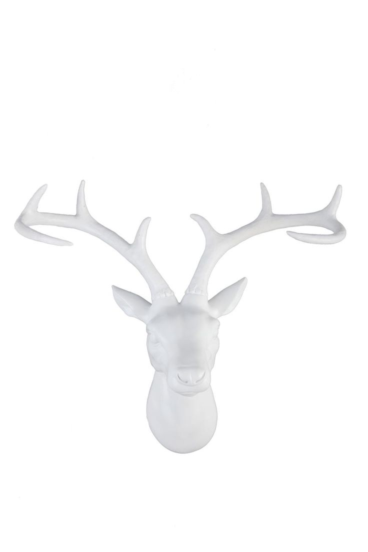stag head large