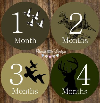 Monthly Baby Stickers Boy Camo, Deer, Duck, hunting, Monthly Onesie Stickers, Monthly Milestone Stickers, Baby Shower #122 by VibrantLittleDesigns on Etsy https://www.etsy.com/listing/203797414/monthly-baby-stickers-boy-camo-deer-duck