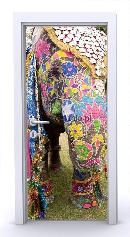 Naklejka na drzwi ND1166 - Kolorowy słoń