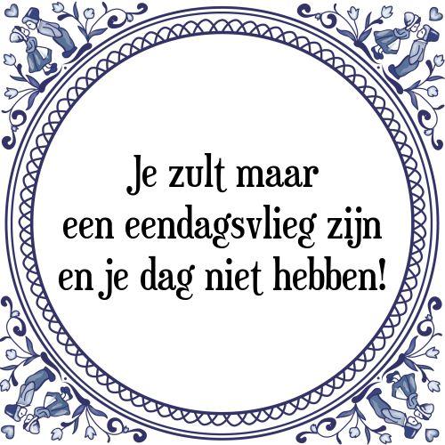 Je zult maar een eendagsvlieg zijn en je dag niet hebben - Bekijk of bestel deze Tegel nu op Tegelspreuken.nl