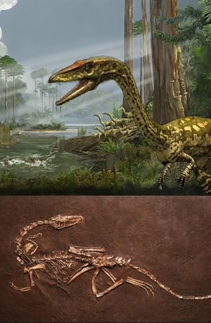 1000+ images about Dinosaurs, Ancient Reptiles, Ocean ...