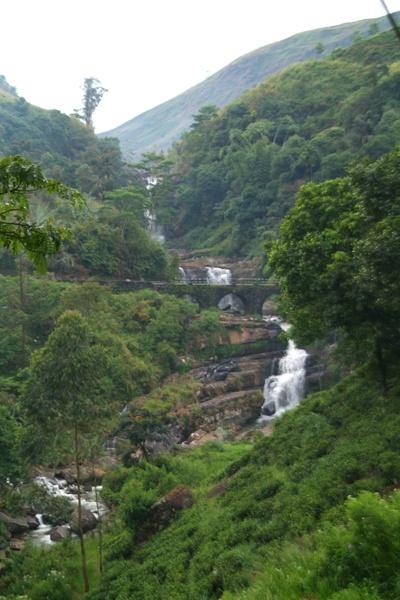 Kataboola | Dilmah Estates