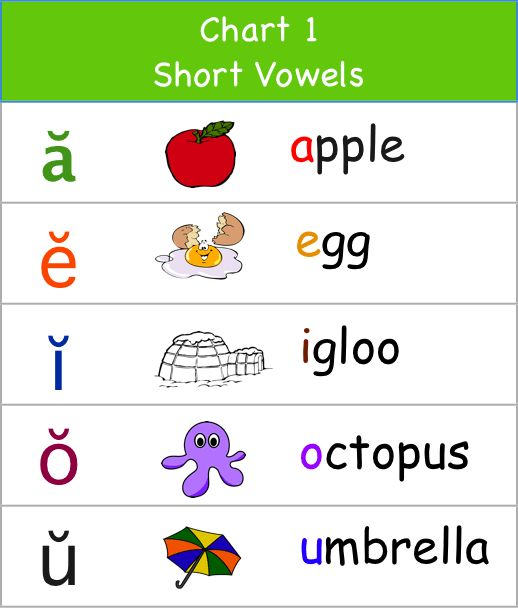 aa 1st step worksheets