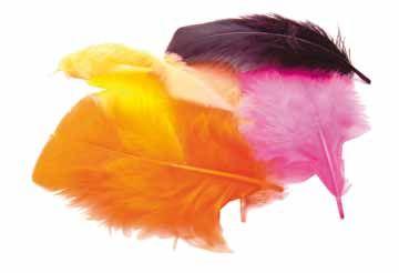 Deze veren leuken elk knutselstukje op. Op SchoolDirect.nl staan nog veel meer leuke decoratiematerialen!