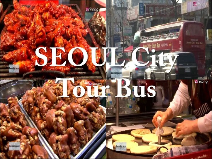 Seoul city tour bus circular attraction routes!