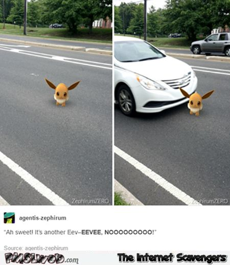 Pokemon Go funny Pictures – Pokemon Go in a nutshell | PMSLweb