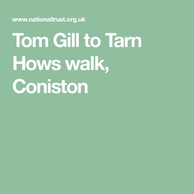 Tom Gill to Tarn Hows walk, Coniston