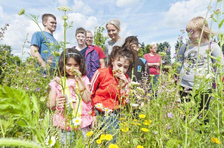 """Ab ins selbst gesäte Beet: 90 Kinder der Astrid-Lindgren-Schule, der Theodor-Heuss-Schule, der Kita """"Am Schafsberg"""" und des Familienzentrums St."""