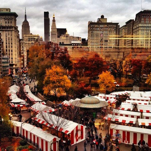 THE 15 THINGS YOU ABSOLUTELY HAVE TO DO IN NYC THIS NOVEMBER #thrillist