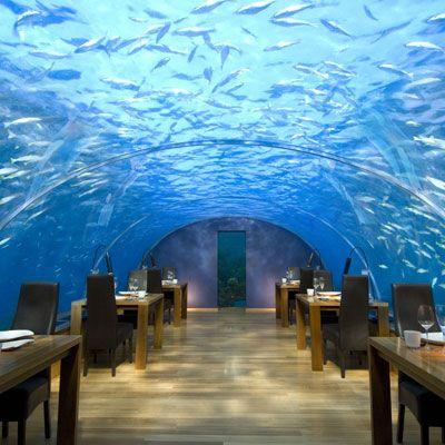 strange restaurants - Google Search