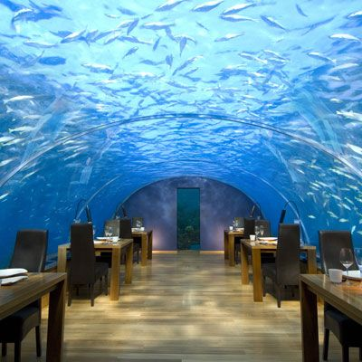 In my dreams... I'd rent out this restaurant and we would rage under the SEA ;)
