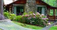 Cabin Rentals in Asheville NC  #visiting Asheville  Pinned by http://realtyProAsheville.com