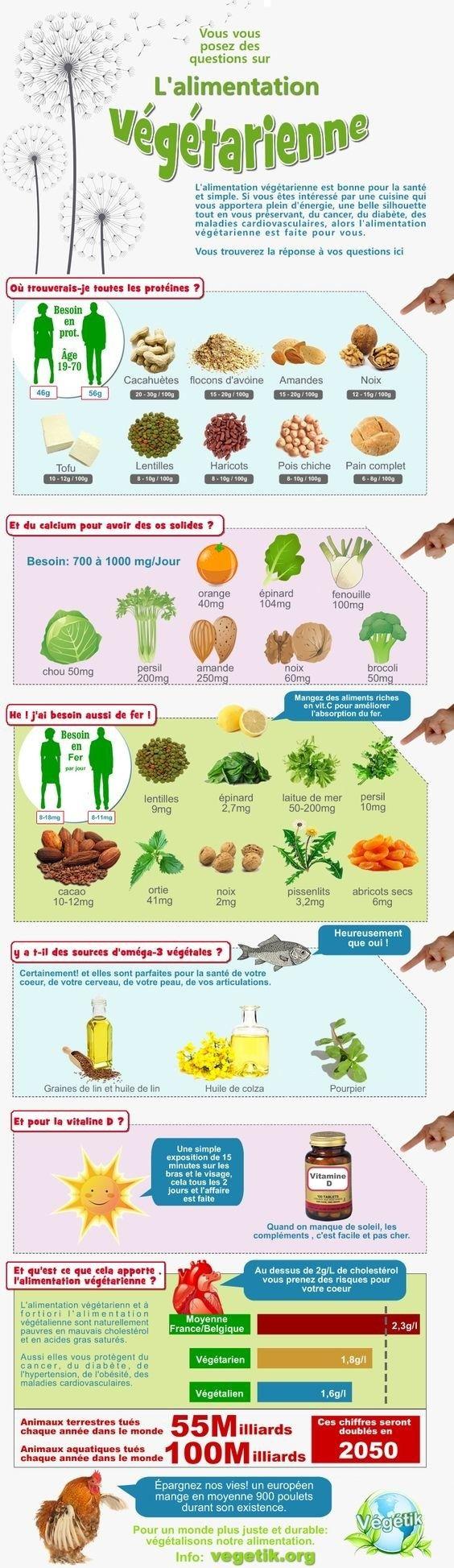 Si vous souhaitez être végétarien-ne mais que vous avez peur d'avoir des carences, ce graphique vous guidera: